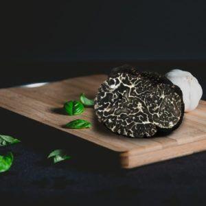 Frischer Trüffel Tuber Brumale Tüffel kaufen Frische Schwarzer Trüffel
